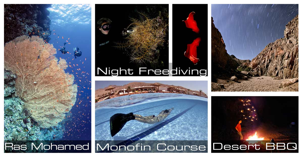 freediving-package