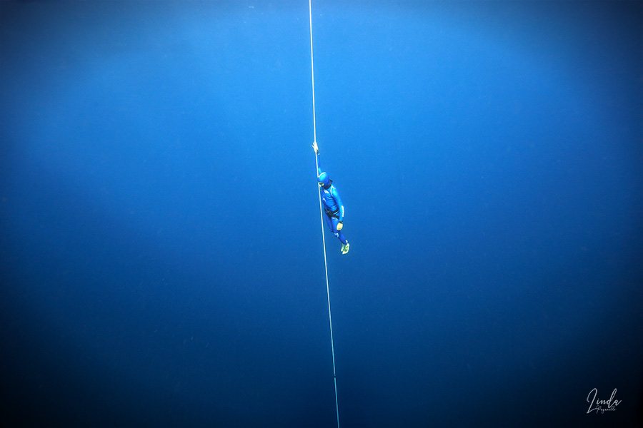freediving competition photo