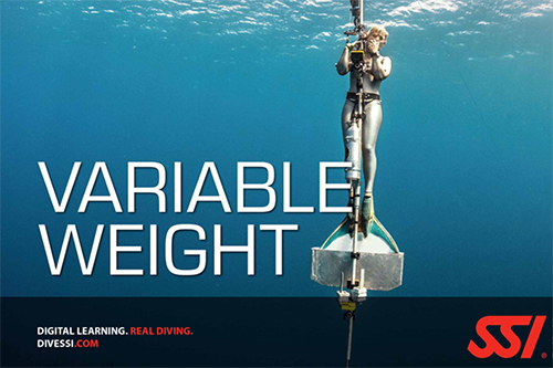 variable-weight
