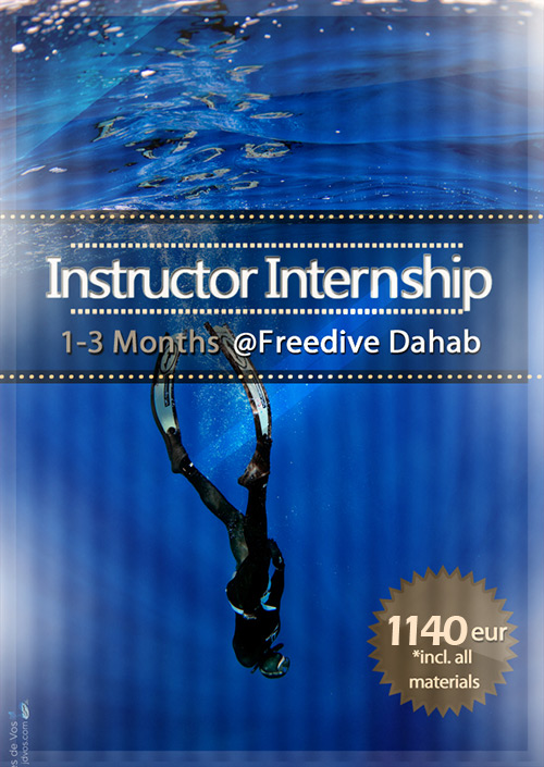 Freediving Internship